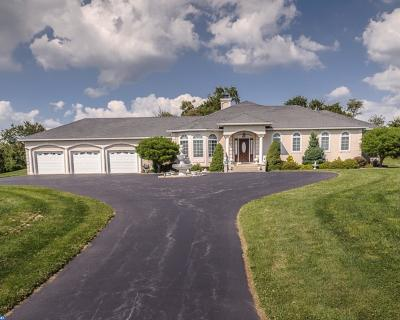Phoenixville Single Family Home ACTIVE: 109 Badalamenti Drive