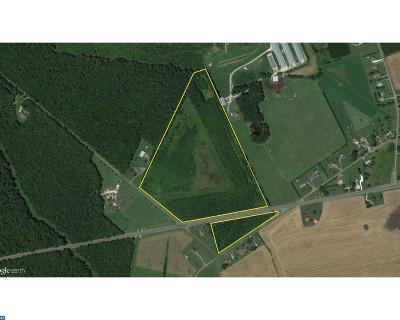 Harrington Residential Lots & Land ACTIVE: 39 Ac Vernon Road