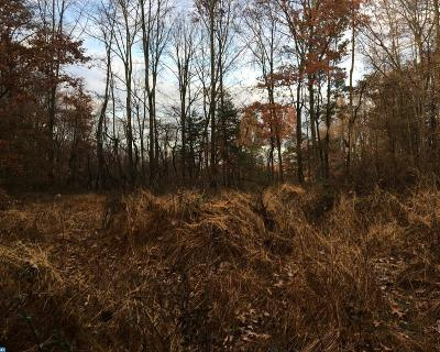 PA-Bucks County Residential Lots & Land ACTIVE: 2710-L3 Winding Road