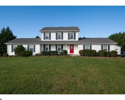 Smyrna Single Family Home ACTIVE: 3923 Wheatleys Pond Road