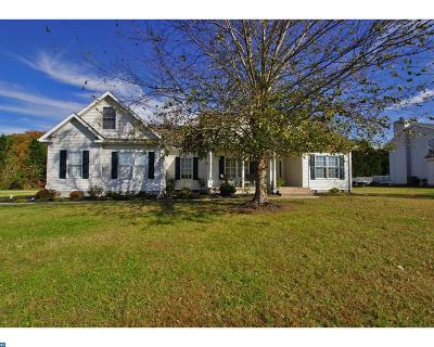 Dover Single Family Home ACTIVE: 102 Winding Ridge Road