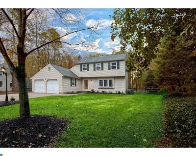 Medford Single Family Home ACTIVE: 259 Sunny Jim Drive