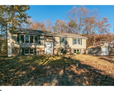 Chesilhurst Single Family Home ACTIVE: 602 Morris Avenue