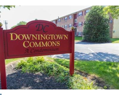 Downingtown Condo/Townhouse ACTIVE: 335 E Lancaster Avenue #E11