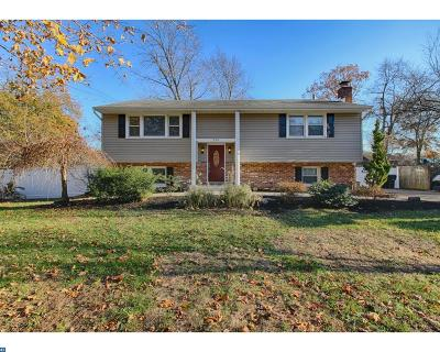 Berlin Single Family Home ACTIVE: 208 Chestnut Avenue