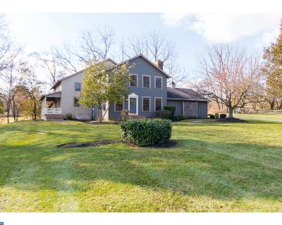 Spring City Single Family Home ACTIVE: 40 Wiand Lane