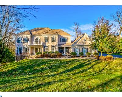 Avondale, Coatesville, Downingtown, Exton, Honey Brook, Malvern, Oxford, Parkesburg, Phoenixville, Radnor, Spring City, West Chester, West Grove Single Family Home ACTIVE: 9 Hollow Drive