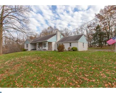 Phoenixville Single Family Home ACTIVE: 213 Kimber Drive