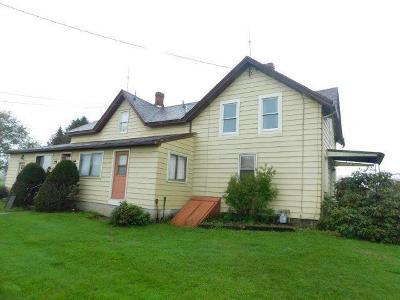 Sugar Grove Single Family Home For Sale: 310 Race Street