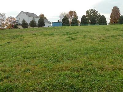 Residential Lots & Land For Sale: 601 Heidi Lane
