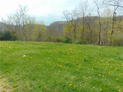 Westmoreland County Residential Lots & Land For Sale: 16 & 17 Route 993