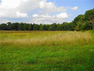 Westmoreland County Residential Lots & Land For Sale: 00 Route 711s/Acorn Lane