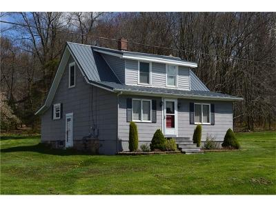 Somerset/Cambria County Single Family Home For Sale: 554 Garrett Shortcut Rd