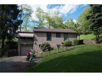 Wilkins Twp Single Family Home For Sale: 7 Sylvia Ln