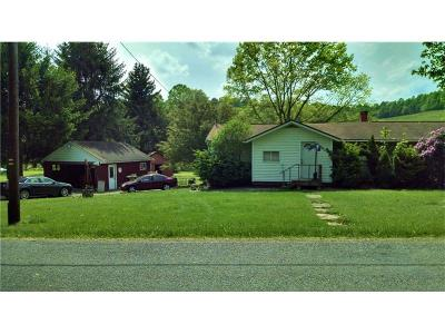 Apollo Boro Single Family Home For Sale: 1724 Shady Plain Rd
