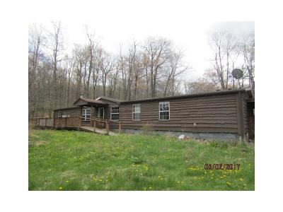 Somerset/Cambria County Mobile/Manufactured For Sale: 415 Zermatt Rd