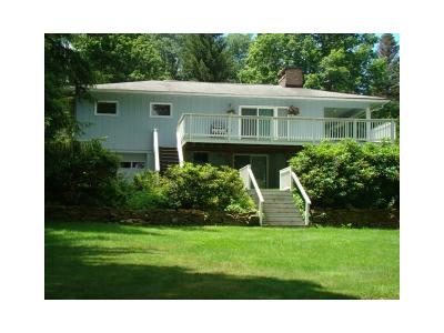Indian Lake Boro Single Family Home For Sale: 127 Ithaca Lane