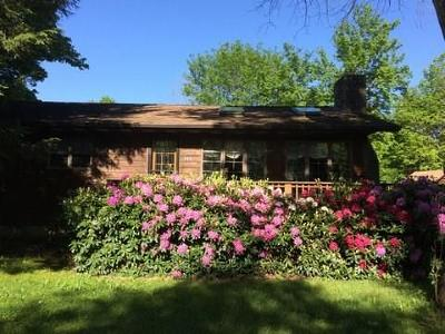 Indian Lake Boro Single Family Home For Sale: 268 Sioux Path