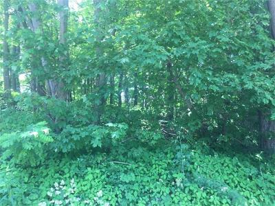 Somerset/Cambria County Residential Lots & Land For Sale: County Line Road