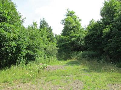 Somerset/Cambria County Residential Lots & Land For Sale: Lot 45 Laurel Falls Road