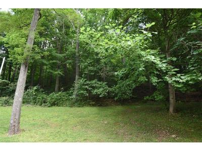 Somerset/Cambria County Residential Lots & Land For Sale: Lot 23 Deer Ridge Lane