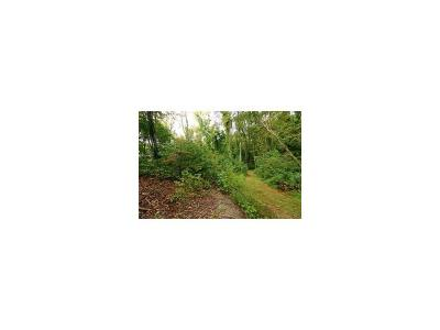 Westmoreland County Residential Lots & Land For Sale: 1075 Paintertown Rd