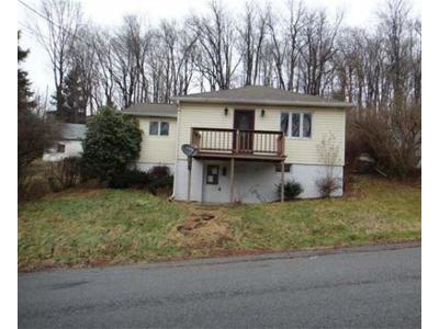 Somerset/Cambria County Single Family Home For Sale: 33 Blue Bird Lane