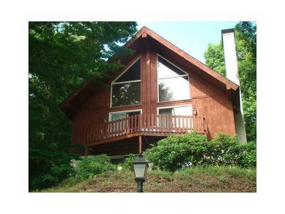 Indian Lake Boro Single Family Home For Sale: 1339 Peninsula Drive