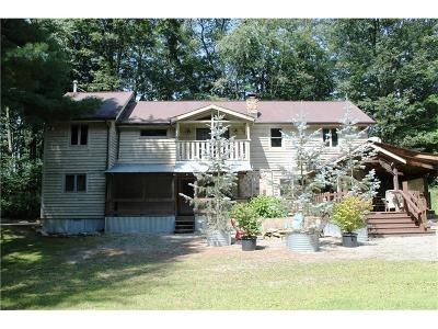 Somerset/Cambria County Single Family Home For Sale: 1132 Gary Road