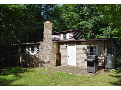 Somerset/Cambria County Single Family Home For Sale: Stahl Road