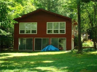 Indian Lake Boro Single Family Home For Sale: 260 South Peninsula
