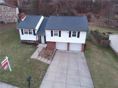 Verona Single Family Home For Sale: 438 Rosanne Dr