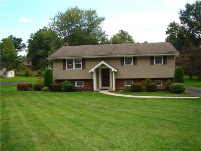 Murrysville Single Family Home Contingent: 3497 McWilliams