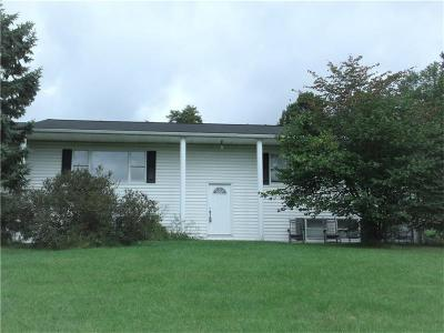Murrysville Single Family Home For Sale: 6428 Hilty Road
