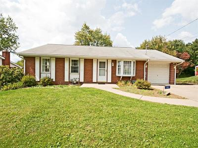 Delmont Single Family Home For Sale: 46 Mark Drive