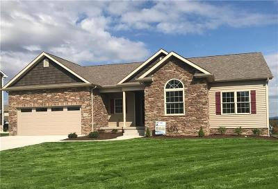 Single Family Home For Sale: 520 Shannon Drive