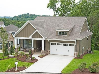 Murrysville Single Family Home For Sale: 5165 Blue Sage