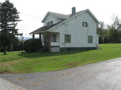 Single Family Home For Sale: 130 Pole Cat Road