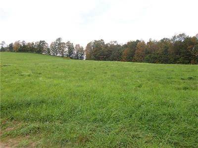 Somerset/Cambria County Residential Lots & Land For Sale: 300 Scenic View Drive