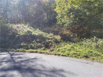 Somerset/Cambria County Residential Lots & Land For Sale: --- High St