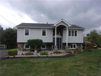 Single Family Home For Sale: 115 Mohican Dr