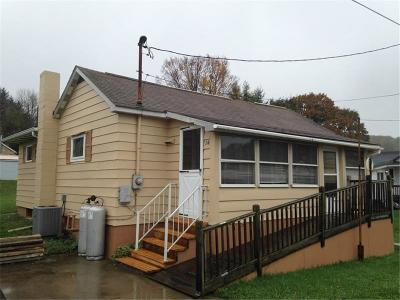 Somerset/Cambria County Single Family Home For Sale: 16 Charles