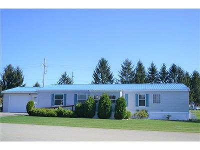 Somerset/Cambria County Mobile/Manufactured For Sale: 111 Alex Ln