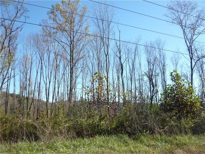 Somerset/Cambria County Residential Lots & Land For Sale: # Mt Davis Rd