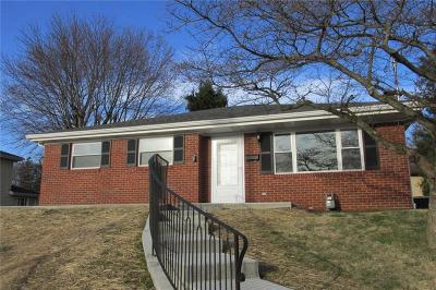 Single Family Home For Sale: 223 Orchard Hill Drive