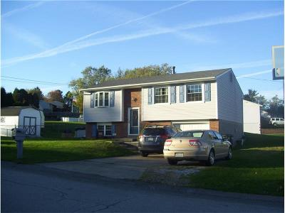 Single Family Home For Sale: 3 Cree Drive