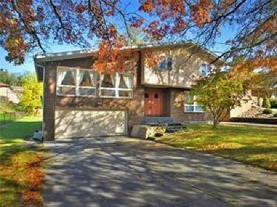 North Huntingdon Single Family Home For Sale: 12229 Roth Dr