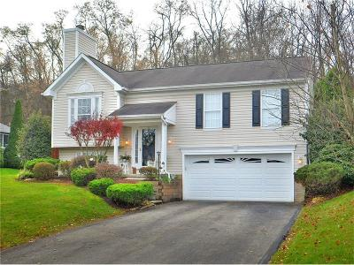 North Huntingdon Single Family Home For Sale: 970 Castleview Dr