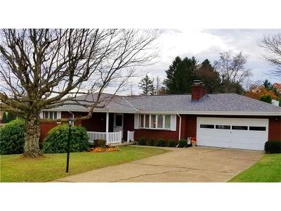 North Huntingdon Single Family Home For Sale: 11489 Brook St
