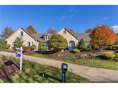 Murrysville Single Family Home For Sale: 2009 High Pointe Ct #15668
